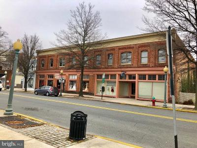Dover Commercial For Sale: 142 S Governors Boulevard