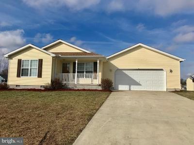 Felton Single Family Home For Sale: 29 Fan Branch Drive