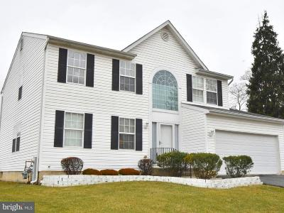 Perry Hall Single Family Home For Sale: 4303 Silver Spring Road