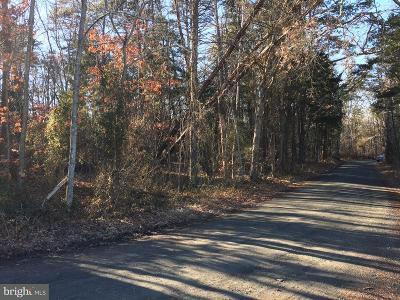 Nokesville Residential Lots & Land For Sale: 11250 Reid Lane