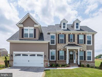 Clarksville, Columbia, Ellicott City, Laurel Single Family Home For Sale: 12541 Vincents Way