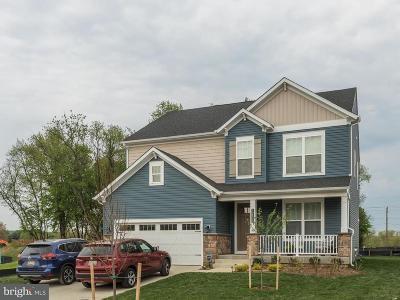Clarksville, Columbia, Ellicott City, Laurel Single Family Home For Sale: 12571 Vincents Way