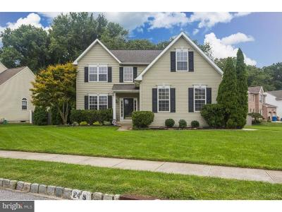 Swedesboro Single Family Home For Sale: 243 Juniper Lane