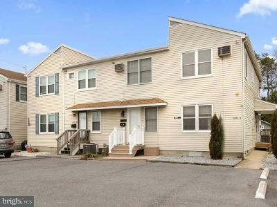 Ocean City Single Family Home For Sale: 13803 Sinepuxent Avenue