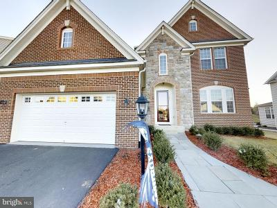 Stafford Single Family Home For Sale: 141 Coachman Circle