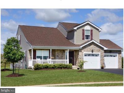 Frederica Single Family Home For Sale: 127 Sand Dollar Lane