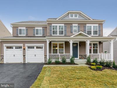 Triangle Single Family Home For Sale: 19231 Stoney Ridge Place