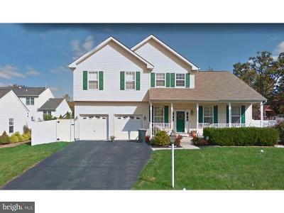 Norristown Single Family Home For Sale: 100 Koegel Lane