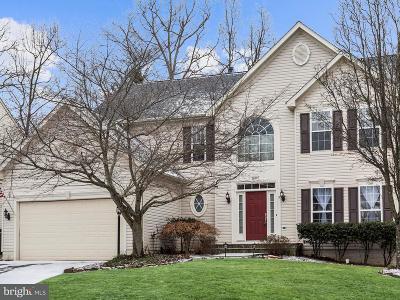 Bristow Single Family Home For Sale: 10107 Tummel Falls Drive