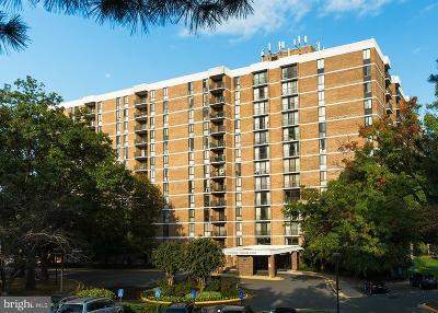 Falls Church Rental For Rent: 2311 Pimmit Drive #911