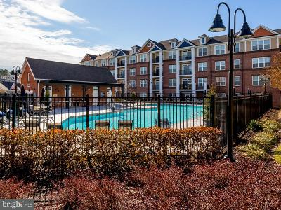 Fredericksburg Townhouse For Sale: 701 Cobblestone Boulevard #312