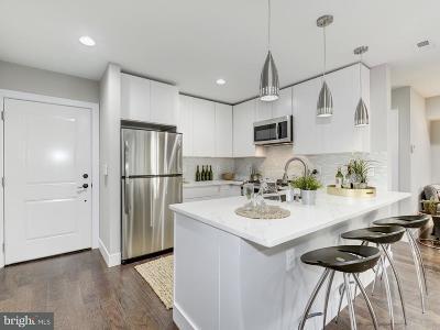 Washington Single Family Home For Sale: 528 Kennedy Street NW #401