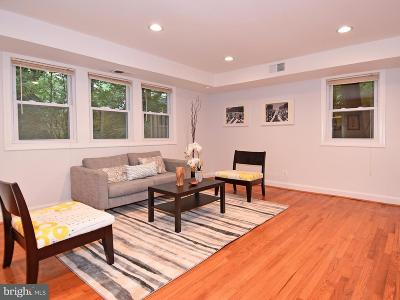 Silver Spring Townhouse For Sale: 8522 Geren Road #18-4