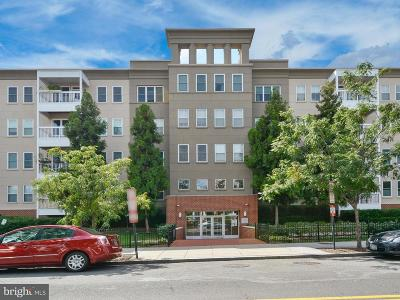 Washington Single Family Home For Sale: 2001 12th Street NW #104