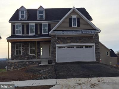 Doylestown Single Family Home For Sale: 332 Mystic View Lane