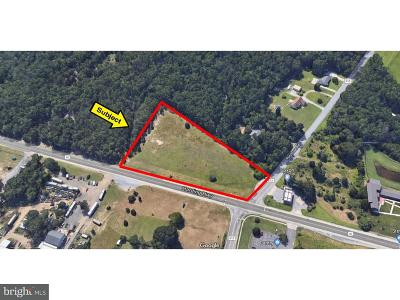 Franklinville Residential Lots & Land For Sale: 1 Harding Highway