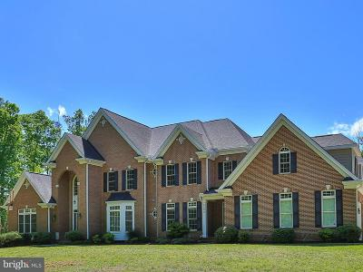 Bristow, Nokesville Single Family Home For Sale: 9500 Shevlin Court