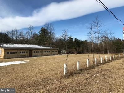 Frederick County Single Family Home For Sale: 117 Border Lane