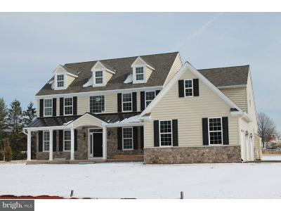 Lansdale Single Family Home For Sale: 2210 Weber Road