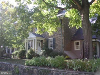 New Hope Single Family Home For Sale: 43 Street Road