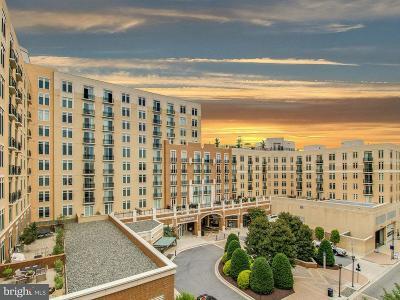 Oxon Hill Condo For Sale: 155 Potomac Passage #805