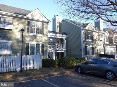 Arlington Rental For Rent: 2805 S Woodrow Street #1