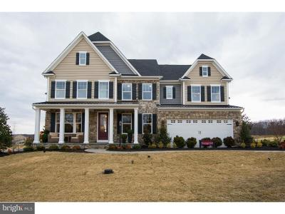 Bucks County Single Family Home For Sale: 5 Ruthies Way