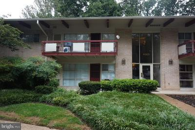 Annandale Condo Active Under Contract: 4305 Americana Drive #C-101