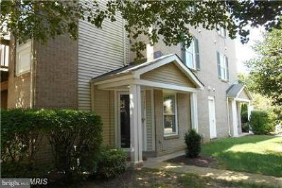 Fairfax Rental For Rent: 11712 Scooter Lane #20