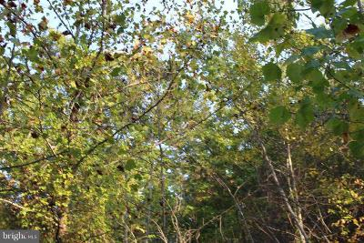 Warren County Residential Lots & Land For Sale: Stecher Ct, Cashmere