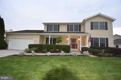 Dillsburg Single Family Home For Sale: 31 Summer Drive