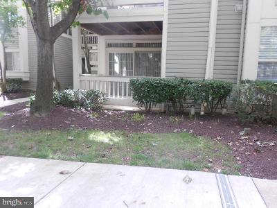 Rockville Condo For Sale: 10846 Antigua Terrace #63