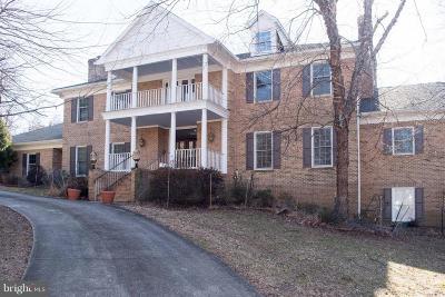 Fairfax County Single Family Home For Sale: 9411 Arnon Chapel Road