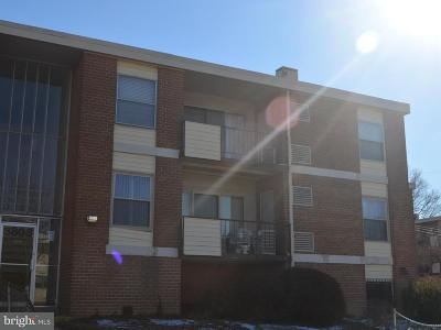 Suitland Rental For Rent: 3803 Saint Barnabas Road #T