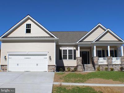 Stafford County, Caroline County, King George County, Culpeper County, Orange County Single Family Home For Sale: 18006 Coolidge Lane