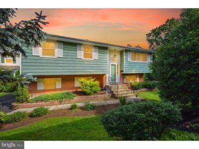 Montgomery County Single Family Home For Sale: 339 Limekiln Pike