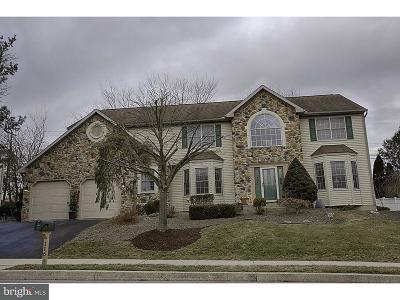 Sinking Spring Single Family Home For Sale: 116 Pennsylvania Avenue