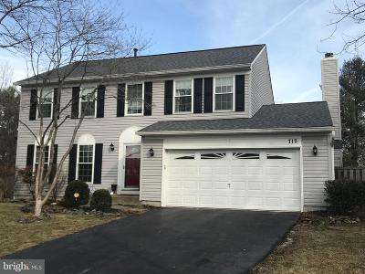Leesburg Single Family Home For Sale: 712 Southview Place NE