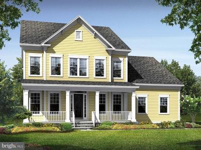 Ashburn Single Family Home For Sale: 41758 Ashmeadow Court