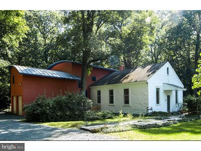 Glenmoore Single Family Home For Sale: 1420 Little Conestoga Road
