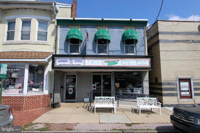 Cumberland County Commercial For Sale: 321 Bridge Street
