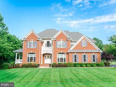 Hedgesville Single Family Home For Sale: 241 Chesapeake Lane