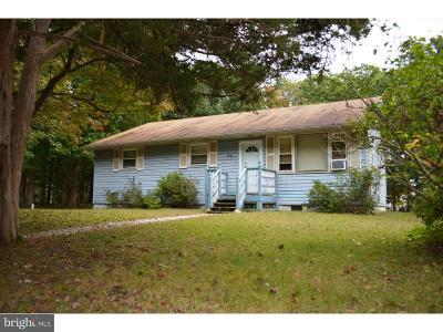 Millville Single Family Home For Sale: 25 Sandy Lane