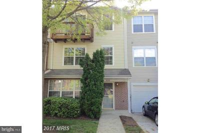 Bowie Rental For Rent: 4649 Deepwood Court #98D