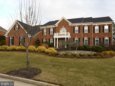Dominion Valley, Dominion Valley Country, Dominion Valley Country Club, Dominion Valley Country Club - Carolinas, Dominion Valley Country Club - Estates, Dominion Valley Country Club - Executives, Dominion Valley County C Single Family Home For Sale: 15031 Walking Stick Way