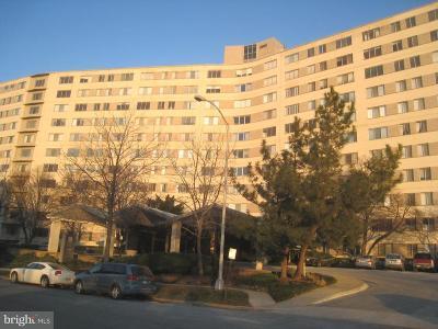 Arlington Rental For Rent: 1200 N Nash Street #224