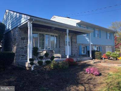 Gilbertsville Single Family Home For Sale: 3001 Lutheran Road