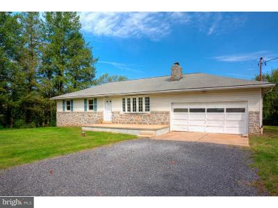 Birdsboro Single Family Home For Sale: 639 Ben Franklin Highway