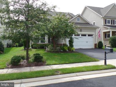 Ashburn Single Family Home For Sale: 20559 Crescent Pointe Place