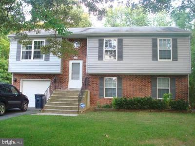 Brandywine Single Family Home For Sale: 6201 Church Drive